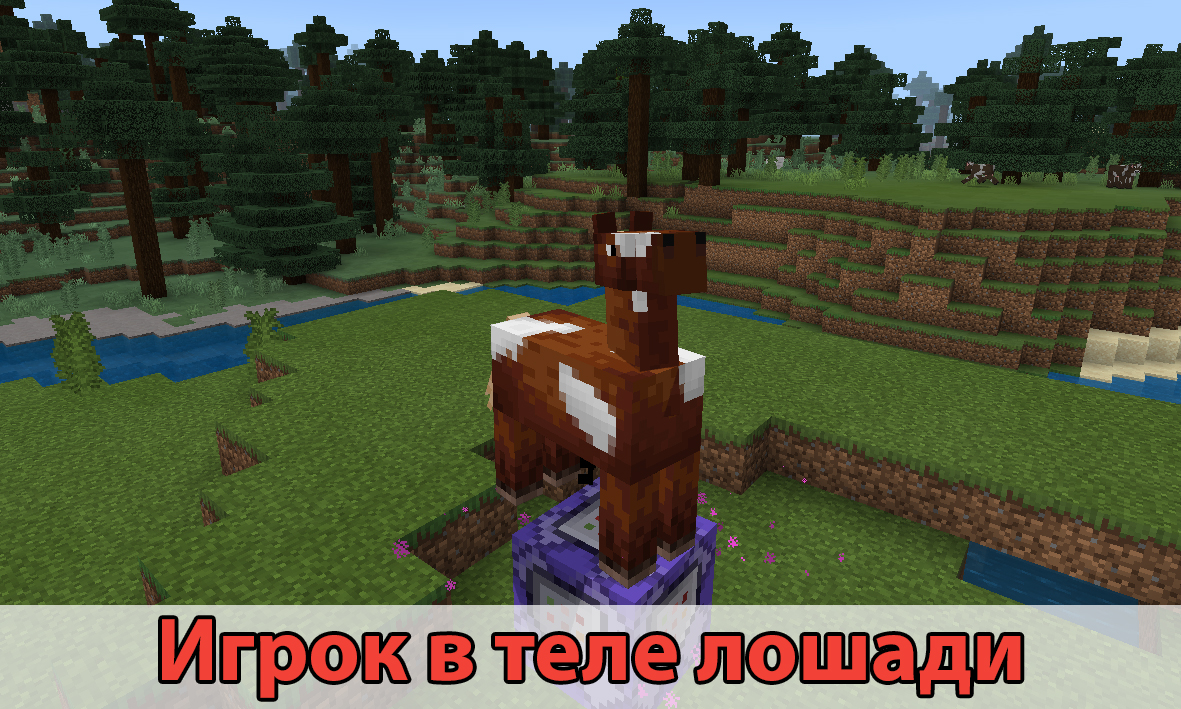 Игрок в теле лошади в моде Morph на Майнкрафт ПЕ