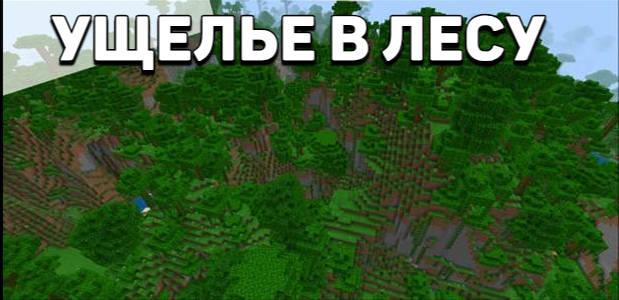 Сид на ущелье в лесу для Майнкрафт 1.10.0