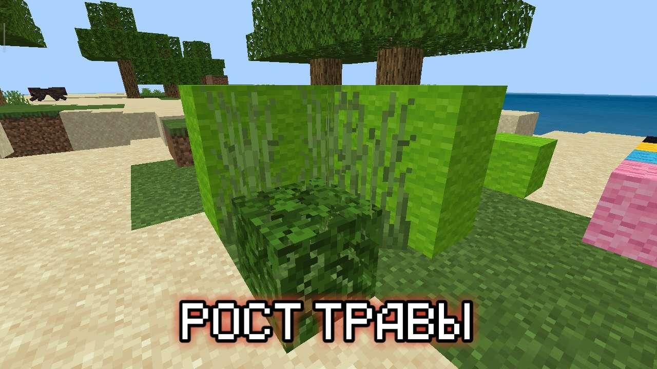 Рост травы в Майнкрафт Покет Эдишн 1.12.0.10