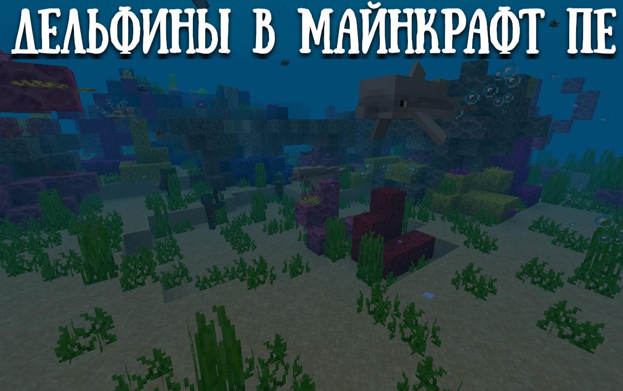 Дельфины в Майнкрафт ПЕ 1.4.4