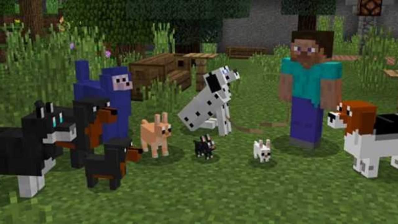 Собаки из мода Собаководство для Майнкрафт ПЕ