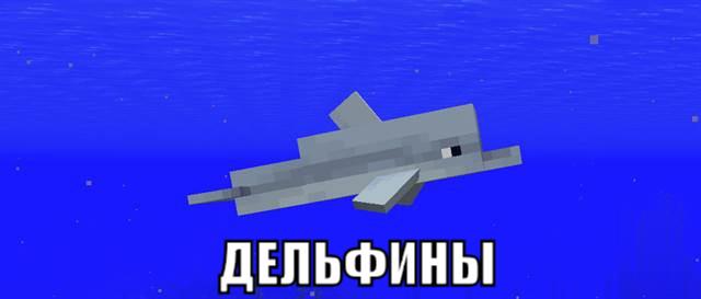 Дельфины в Майнкрафт ПЕ 1.4.2