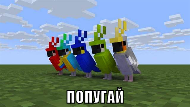 Попугай в Майнкрафт ПЕ 1.2.2