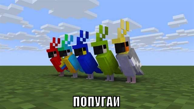 Попугаи в Майнкрафт ПЕ 1.2.10