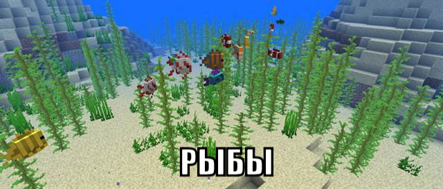 Рыбы в Майнкрафт ПЕ 1.2.14.2
