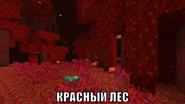 Красный лес в Обновлении Нижнего Мира Майнкрафт ПЕ