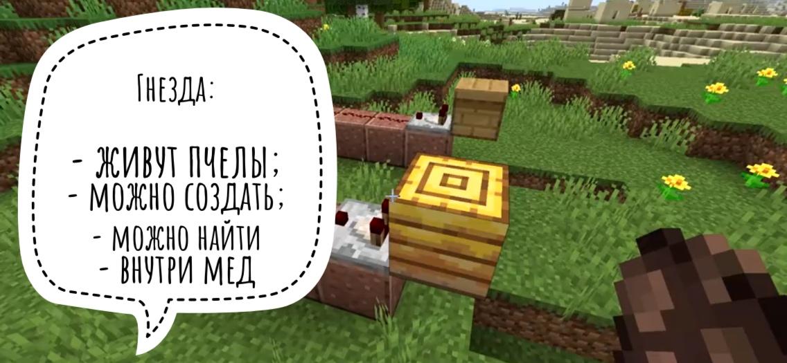 Гнезда в Minecraft Bedrock 1.14.0.51