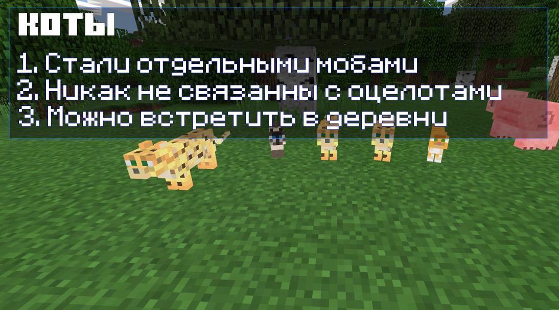 Коты в Майнкрафт ПЕ