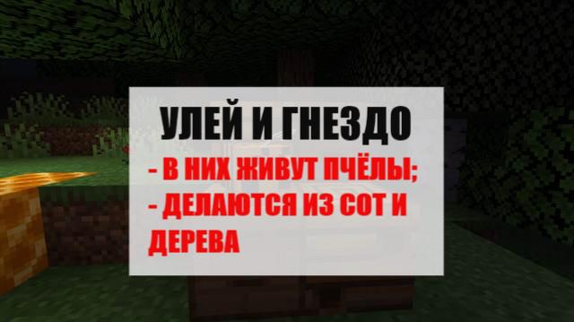 Улей и гнездо в Майнкрафт ПЕ 1.14.2.50