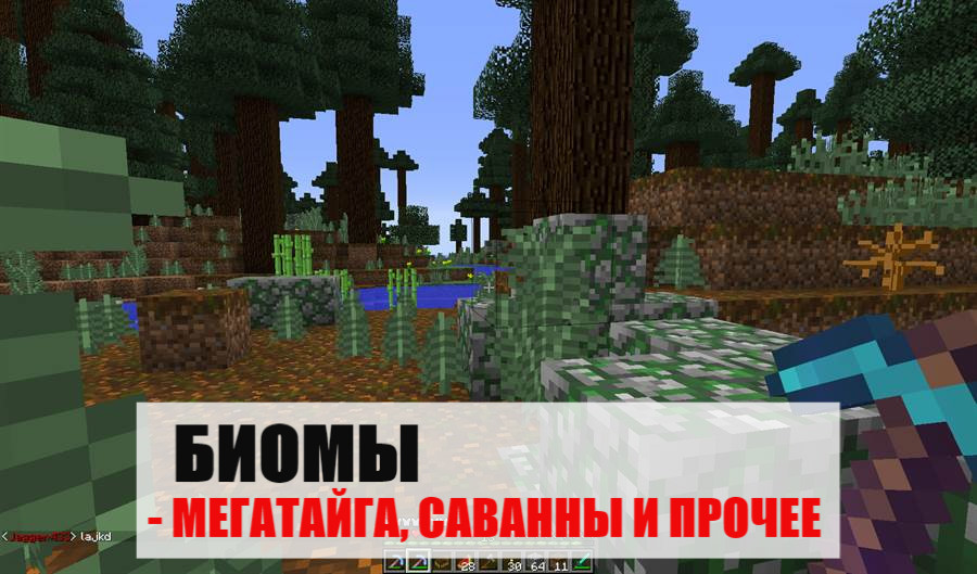 Биомы Майнкрафт ПЕ 0.9.1