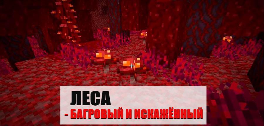 Леса в Майнкрафт ПЕ 1.16.0.51