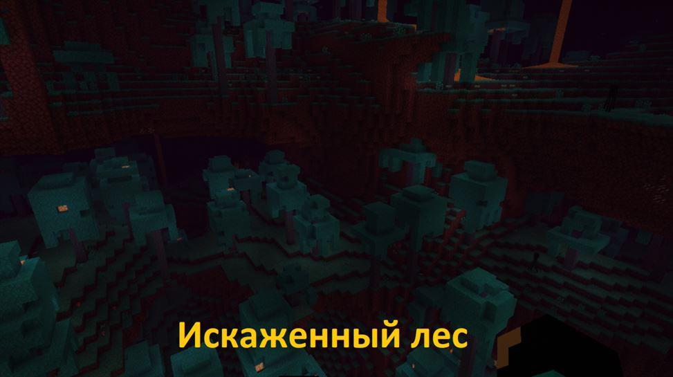 Искаженный лес в Майнкрафт 1.16