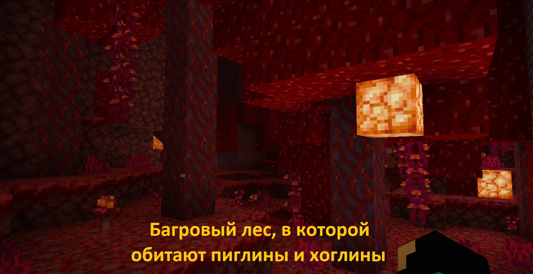 Багровый лес в Minecraft PE 1.16