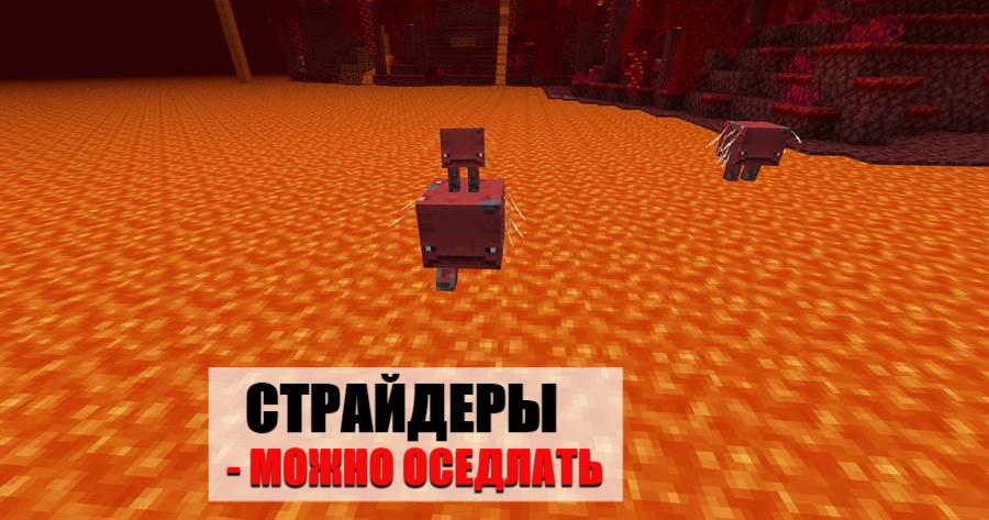 Страйдеры Майнкрафт ПЕ 1.16.0.58
