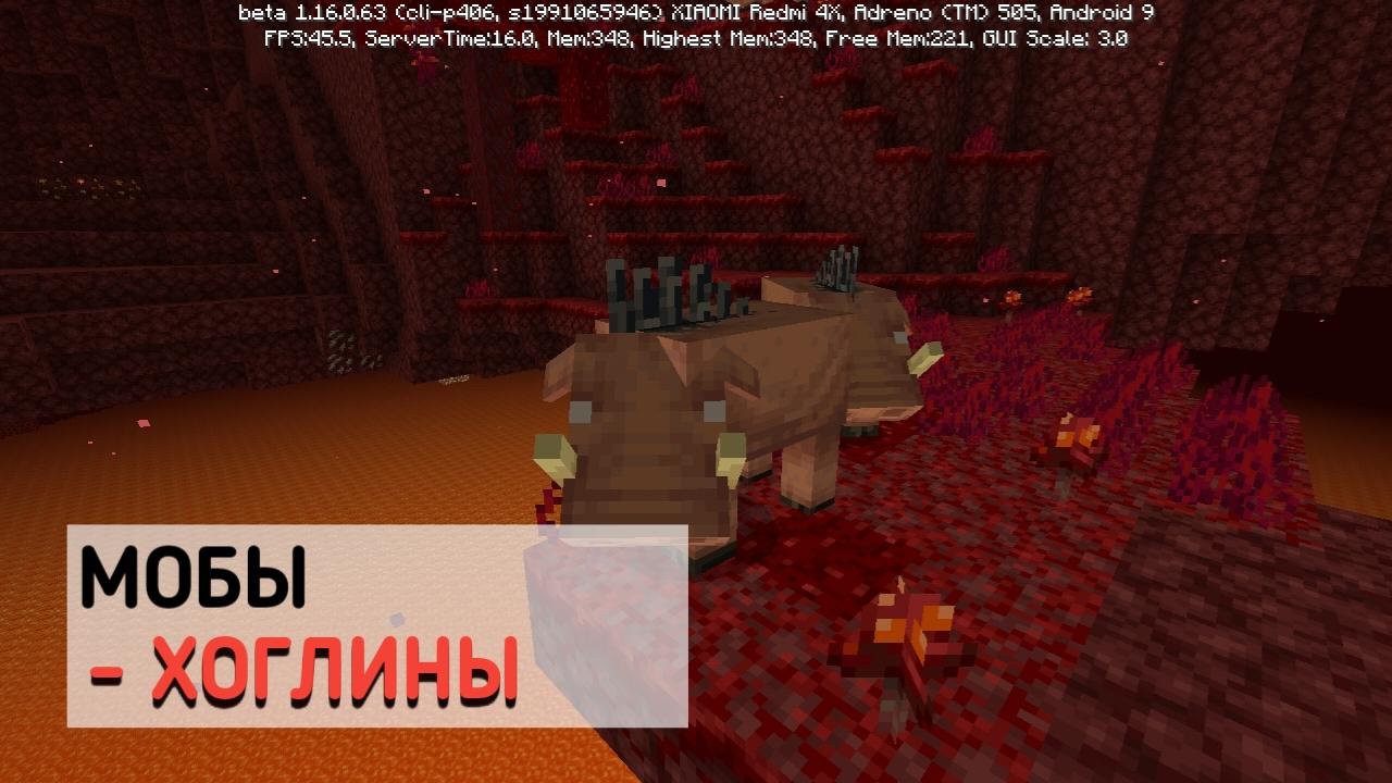 Хоглины в Майнкрафт 1.16.0.63