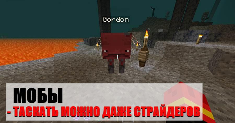 Переноска питомцев на Minecraft PE