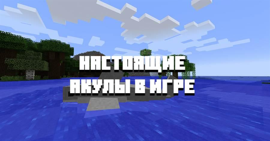 Особенности мода на акул на Minecraft PE