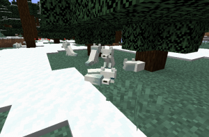 Белые лисы