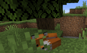 Дом для лисы из ели