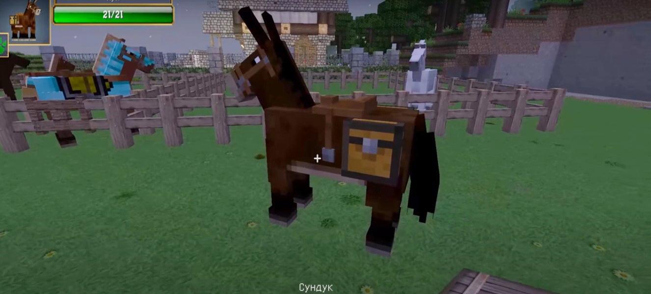 Как одеть седло на мула