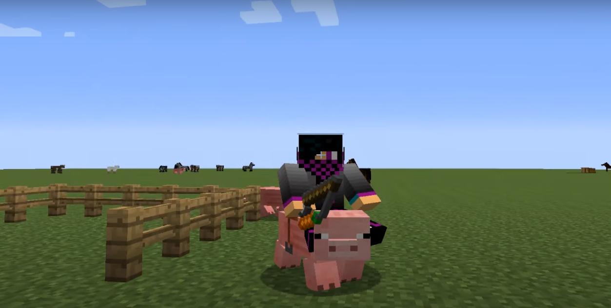 Как надеть седло на свинью
