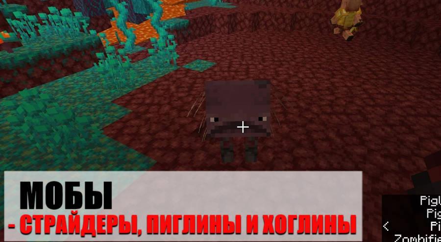 Мобы Майнкрафт 1.16.100.59