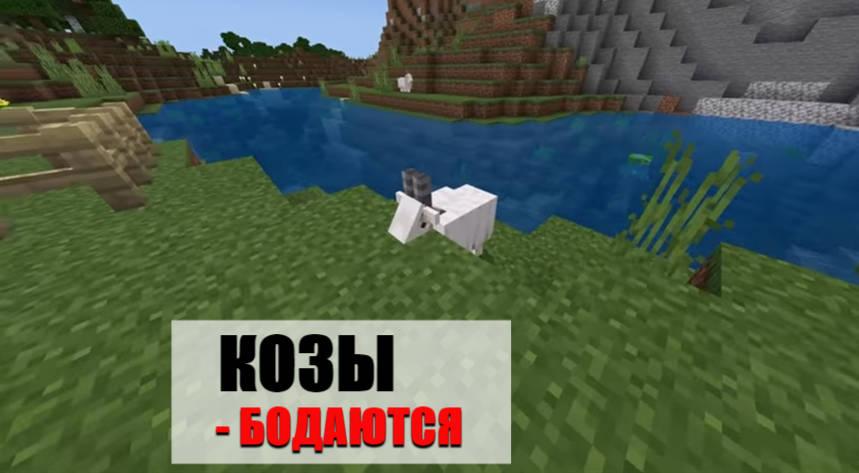 Особенности коз в Minecraft PE 1.16.210.50