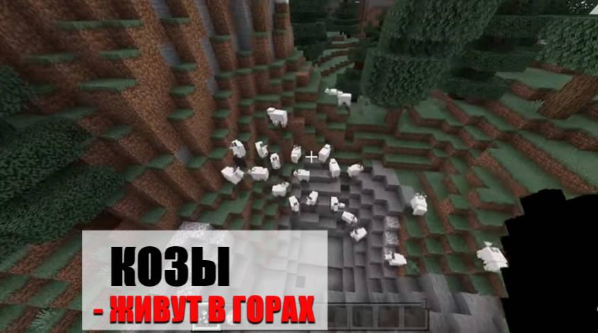 Козы в Minecraft PE 1.16.210.50